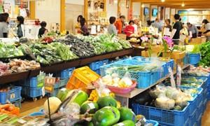 沿線で採れる新鮮な野菜