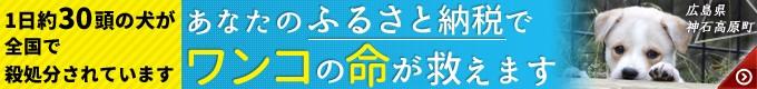 ピースワンコ・ジャパンの活動にご協力ください。