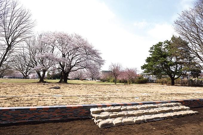「武蔵国分寺跡」