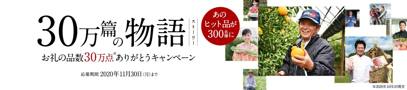 お礼の品30万点突破記念キャンペーン