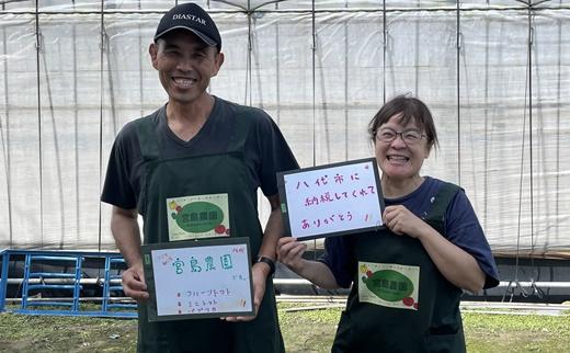 熊本県八代市 トマトの生産者