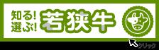 リンク:401年目の、日本の磁気始まりの地