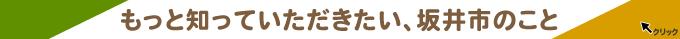 リンク:第114回有田陶器市