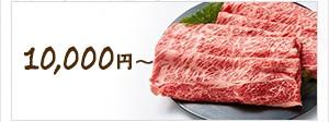 10,000円以上の肉のお礼の品