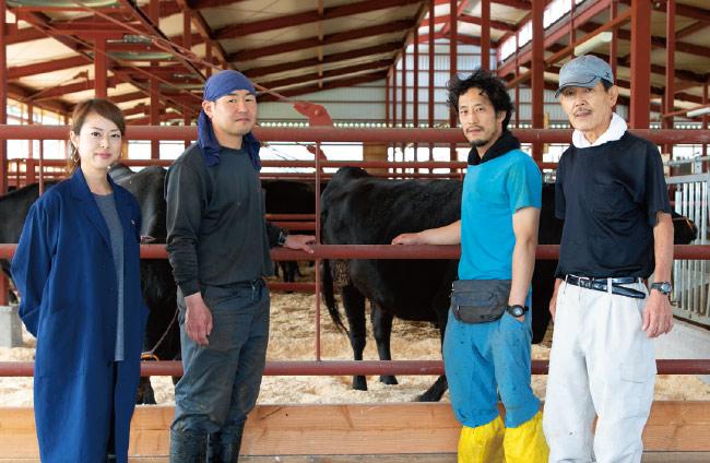 京都府丹波牧場 平井牛