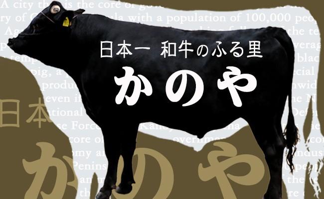 鹿児島県鹿屋市和牛