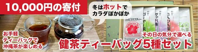 健茶ティーバッグ5種セット