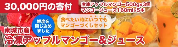 南城市産冷凍アップルマンゴー&ジュース