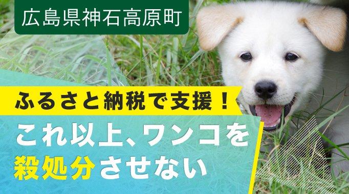 """【年間10,000頭以上が殺されています~日本で殺処分される犬を""""ゼロ""""に~"""