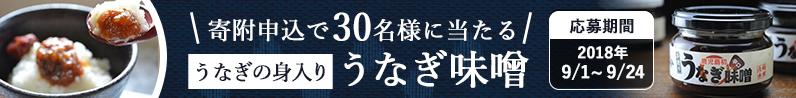 寄附申込でうなぎ味噌が当たるプレゼントキャンペーン
