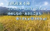 白馬産米4種40kg