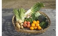 定期的にお届け!!南伊豆の美味しい季節の野菜送ります!