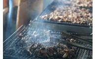 【貴重部位】鰻の日本一の生産地だからこそ!手焼きの鰻肝