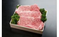 三大和牛!E-6 神戸ビーフ(神戸牛) ステーキ用
