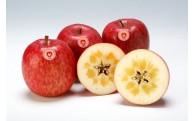 【もうすぐ受付終了】蜜入りりんご「みつまるくん」