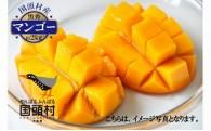 国頭村産マンゴー 黒秀 3玉~6玉入り(約2kg)