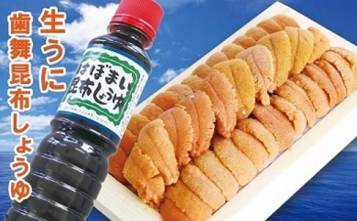 【北海道根室産】エゾバフンウニ130g×1折(昆布しょうゆ)