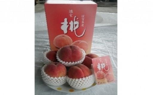 今年もやってきました。桃の季節!