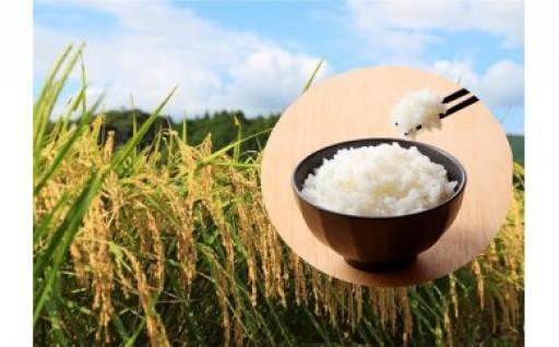 真庭市産コシヒカリ 米ぬか牡蠣栽培米