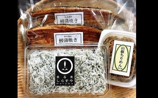 静岡自慢うなぎ長蒲焼き、釜揚げしらす、佃煮セット
