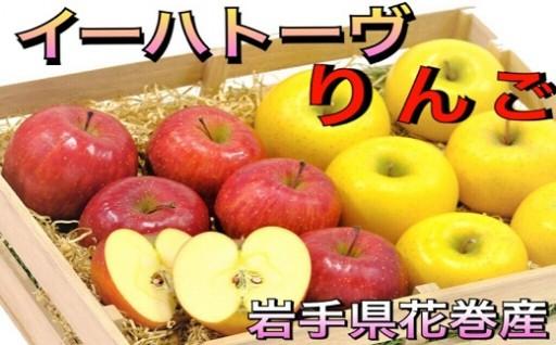 【 岩手花巻産りんご 】予約受付開始☆