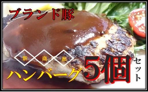 Adf-14【新商品】☆無添加☆ブランドポークハンバーグ