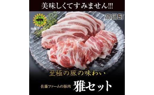 高鍋町産 佐藤ファームの豚肉 雅セット合計2.1kg
