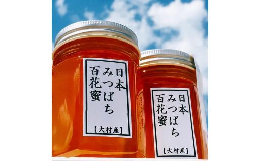 大村産日本みつばち百花蜜2個セット
