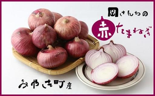 みやき町産 岡さんちの赤玉ねぎ5kg【数量限定】