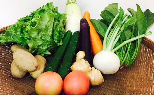 熊本県産 旬の野菜セット