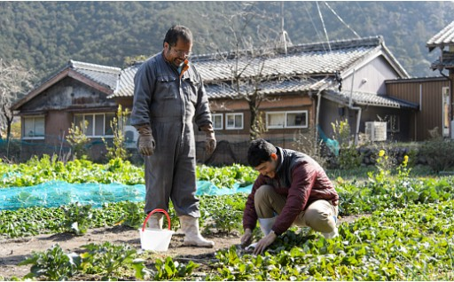 新しい発見がいっぱい!! 紀北町で野菜の収穫体験