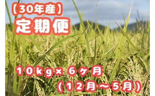 H30年産笠岡ふるさと米 便利な6ヶ月定期便(12月〜5月)