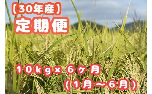 H30年産笠岡ふるさと米 便利な6ヶ月定期便(1月〜6月)