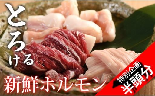 【特別企画】新鮮とろけるホルモン 佐賀産牛「半頭分」
