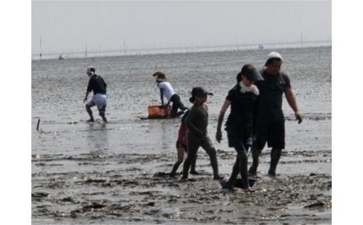 【夏限定】タカッポ漁体験と有明海の幸