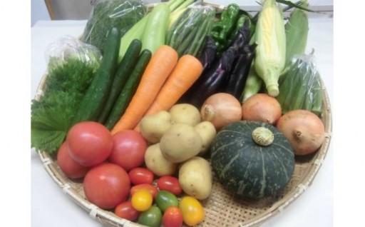 じばさんずの野菜セットに夏野菜が入りました!