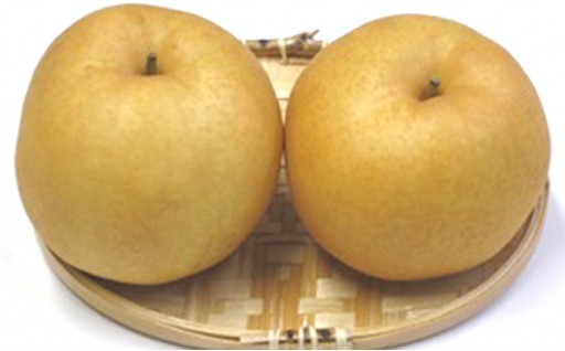 新高梨です。