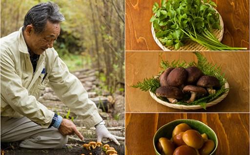 【予約受付】秋の山菜&きのこセット