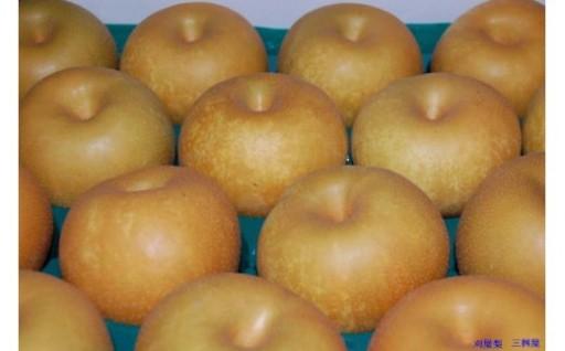 酒田名産 刈屋梨の食べ比べセット