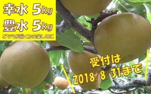 ◆福島県いわき市産の梨◆ 受付は本日23:59まで!