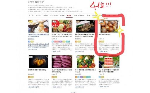 【野菜ランキング4位】北海道栗山町 越冬用たまねぎ