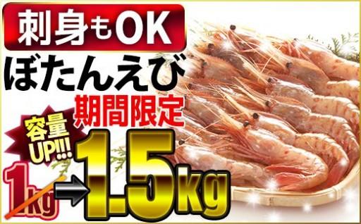 刺身OK <期間限定増量中> ぼたんえび【驚愕の1.5kg】