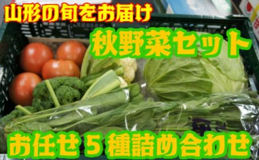 旬の野菜を詰め込みました!