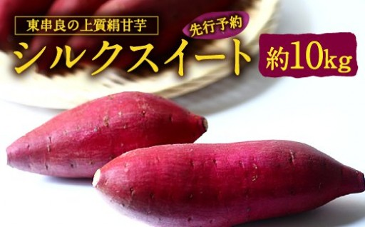 東串良の上質絹甘芋シルクスイート 約10kg(先行予約)
