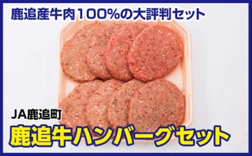 鹿追産牛肉100%!!ハンバーグセット