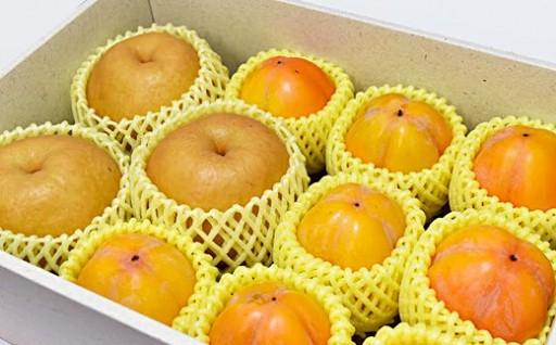 【梨と西条柿とドライフルーツ詰合せ】秋の果物を堪能♪