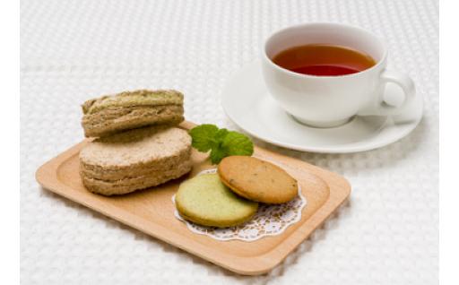 杵築の焼菓子セット(お茶サブレ&お茶ダコワーズ&きつき紅茶)