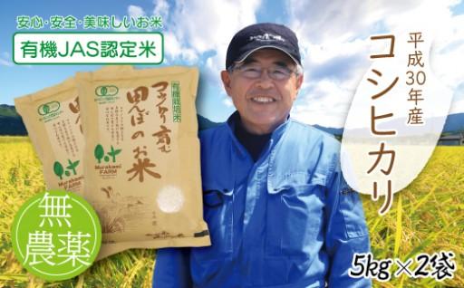 天空の城「竹田城跡」雲海シーズン到来!朝来市「実りの秋」特集