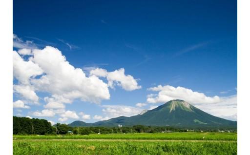 特別企画!鳥取県から「大山ブランド」の品々をお届けします