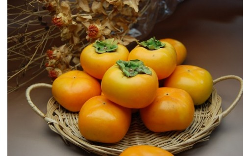 種なし庄内柿約10kg